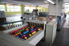 Geflügelhof Ludwig Waiblingen Färberei bunte Eier glänzende Farben