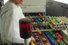 Geflügelhof Ludwig Waiblingen bunte Eier Färberei schöne Farben