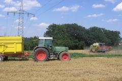 Geflügelhof Ludwig Waiblingen Getreide Weizen Futter Ernte