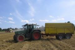 Geflügelhof Ludwig Waiblingen Getreide Weizen Hühnerfutter