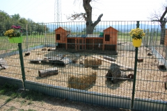 Geflügelhof Ludwig Waiblingen Streichelzoo Hasengehege